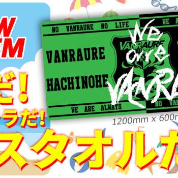 【2020明治安田生命J3リーグ】八戸vs沼津 ホーム戦情報